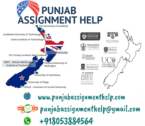 Assignment help NZ
