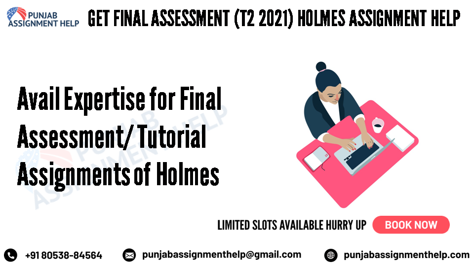 avail expertise for final assessment/ tutorial assignments of holmes